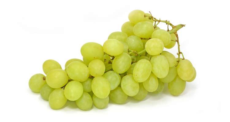 calorias da uva thompson