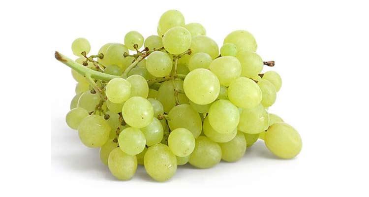 calorias da uva itália