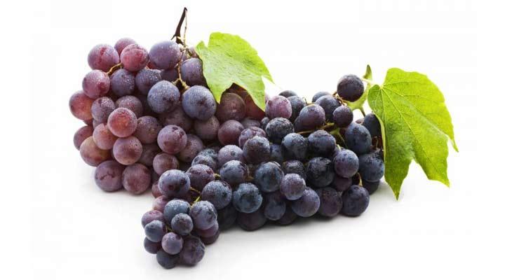 calorias da uva niagara