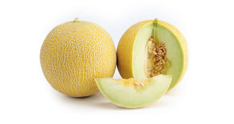 como escolher melão gália