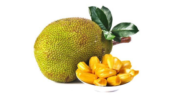 benefícios da jaca - fonte de proteinas e carboidratos