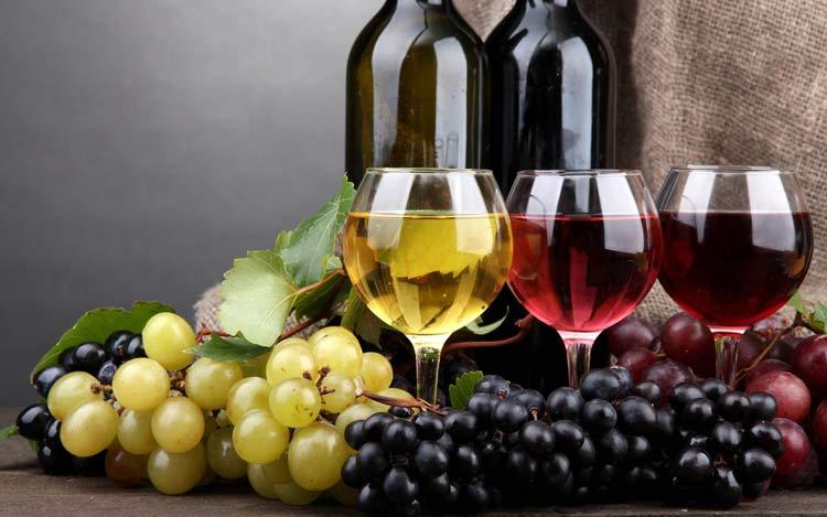 benefícios da uva - vinho