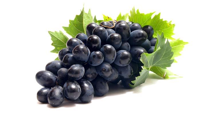 benefícios da uva - cacho de uvas