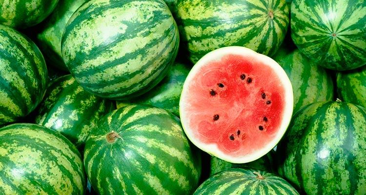 como escolher melancia madura - tamanho
