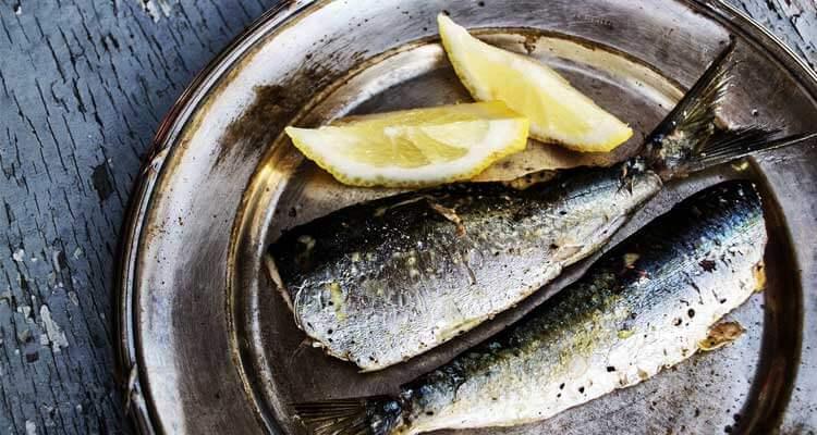receitas com peixe